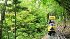 The Oku Iya Valley Tourist Monorail